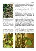 Byens.grønne.lunger - Jens Hvass - Page 7