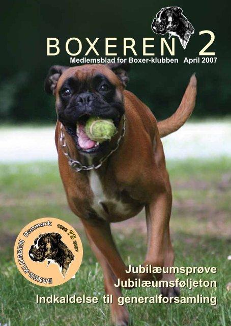 Boxeren 2-2007 - Boxerklubben