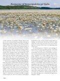December 2012 - Lystfiskeriforeningen - Page 4