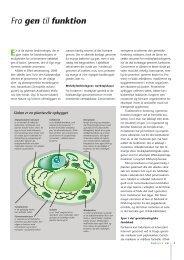 Side 3-7: Fra gen til funktion