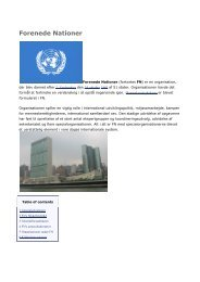 Netleksikon FN (pdf) - Digital Undervisning