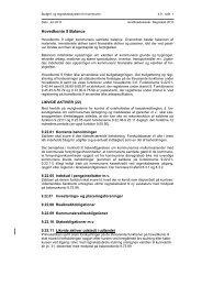 4.9 Balance - Budget- og regnskabssystemerne