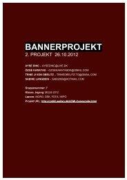 rapport i pdf format