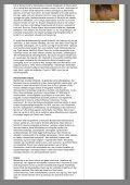 Gem/åben denne artikel som PDF (113 Kb) - 16:9 - Page 3