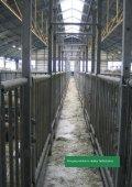 Arbejdsmiljø ved håndtering af kvæg - BAR - jord til bord. - Page 5
