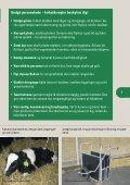 Arbejdsmiljø ved håndtering af kvæg - BAR - jord til bord. - Page 7