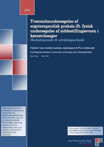 Tværsnitsundersøgelse af ergoterapeutisk praksis ift. fysisk ...