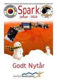 SPARK januar 2010 - Silkeborg Taekwondo Klub
