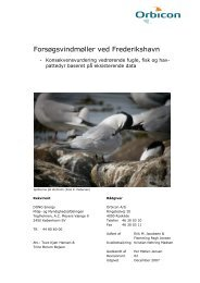 1. Konsekvensvurdering vedrørende fugle, fisk og ... - Energistyrelsen