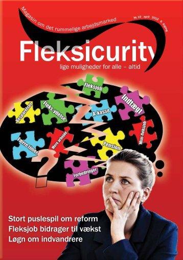 Stort puslespil om reform Fleksjob bidrager til vækst ... - Fleksicurity