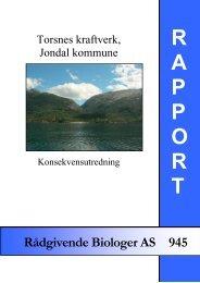 Torsnes Kraftverk, Jondal kommune. Konsekvensutredning