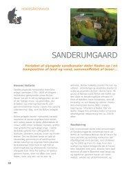 Hent afsnittet om Sanderumgaard (pdf)