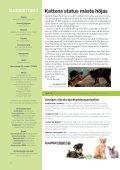 Temanummer om katternas situation - Djurskyddet Sverige - Page 2