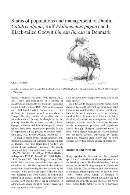 Status Of Populations And Management Of Dunlin Calidris Alpina