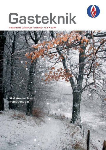 Gasteknik nr. 6, december 2010 [PDF] - Dansk Gas Forening