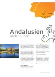 Andalusien under huden - CWT Meetings & Events