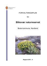 Forvaltningsplan Bliksvær naturreservat - Fylkesmannen.no
