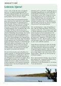 HAVASS-NYTT - Havass Skog BA - Page 2