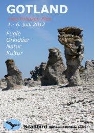 Gotland er en levende historiebog og hørte til ... - Politiken Plus