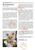 Racehunden 2008 Oktober - Dansk Racehunde Union - Page 4