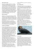 Pattedyr i saltvand - Århus Havkajakklub - Page 2