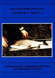 Vandløb og fisk i Gudenåens vandsystem fra udspringet til Mossø