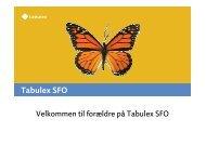 vejledning tabulex sfo.pdf
