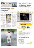 Orange Press - Tirsdag 1. juli - Roskilde Festival - Page 5