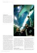 Så farlig er den hvide haj - Page 3