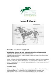 Horses & Muscles - Free Training Systems