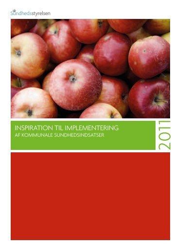 InspIratIon tIl ImplementerIng - Sundhedsstyrelsen