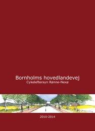 Cykeleftersyn af Bornholms hovedlandevej 1. november 2010