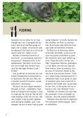SÅDAN PASSER DU DIN HAMSTER - Dyrenes Beskyttelse - Page 4