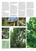 3 - Grønt Miljø - Page 6