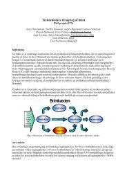Lagring af brint i lette trykbeholdere - Teknologisk Institut