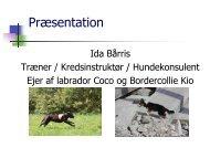 Præsentation - DcH Kreds 1