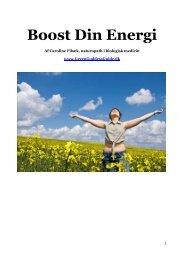 Boost Din Energi - Caroline Fibæk