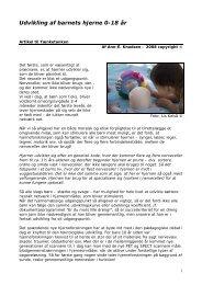 Udvikling af barnets hjerne 0-18 år - Ann Elisabeth Knudsen