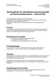 Afslutningsprojekt - Erhvervsakademi Sjælland