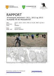 Her kan du lese og laste ned rapporten fra årene 2011-2013