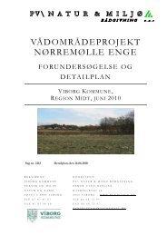 DetailplanRapport220610 - PV\ Natur & Miljø Rådgivning