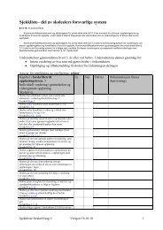 Sjekkliste forskrift kapittel 3, skoler - Buskerud Fylkeskommune