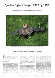 NSKF 97 & 98 - Norsk Ornitologisk Forening