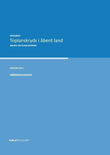 Toplanskryds i åbent land - Vejdirektoratet