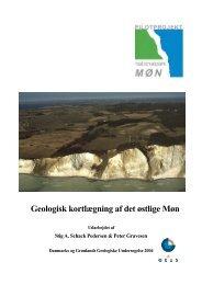 Møns geologi - Danmarks nationalparker