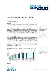 Uddrag af publikationen Dansk Erhvervs Perspektiv, nr. 11 - 2013