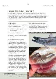 Kapitel 6 - Som en fisk i havet - Fiskericirklen