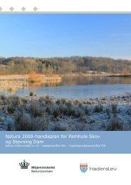 Natura 2000-handleplan for Pamhule Skov og Stevning Dam
