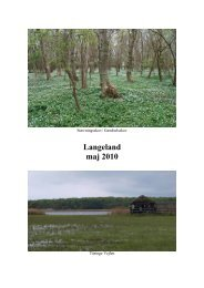 Langeland maj 2010