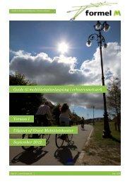 Guide til mobilitetsplanlægning i erhvervsnetværk ... - Formel M